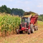 Un salariu pe zi în România. Cât câştigă un inginer agronom: între 1.000 şi 1.500 de euro net pe lună